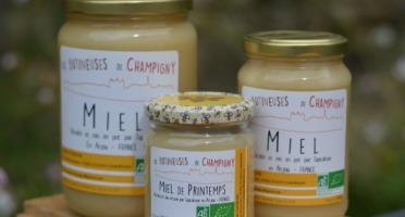 Les Butineuses de Champigny - Miel de Printemps Bio - 250 g