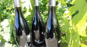 Domaine des Bourrats - Saint Pourçain AOC Rouge Cuvée Pinotissime - 3 bouteilles