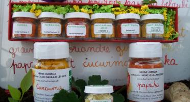 HERBA HUMANA - Coffret D'épices Bio Cultivées En France + 3 Flacons Paprika, Curcuma, Gingembre