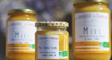 Les Butineuses de Champigny - Miel toutes fleurs bio - 250 g