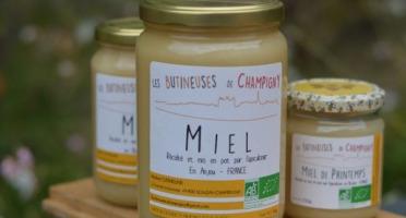 Les Butineuses de Champigny - Miel de Printemps Bio - 1000 g