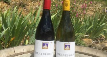 Depuis des Lustres - Comptoir Corse - Clos Canarelli - cuvée Tarra di Sognu - Duo