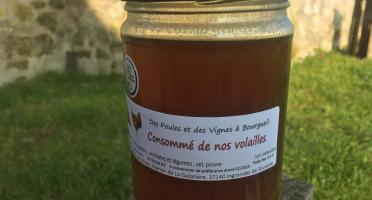 Des Poules et des Vignes à Bourgueil - Consommé De nos volailles