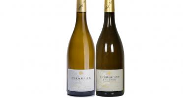 Domaine Tupinier Philippe - 1 Bouteille Bourgogne Vieille Vigne 1 Chablis