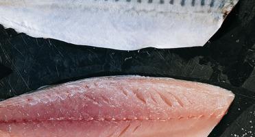 Côté Fish - Mon poisson direct pêcheurs - Filets De Maquereaux 300g