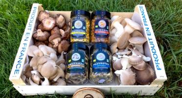 Les champignons du Loc'h - Panier Champigourmand