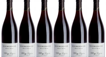 Domaine TUPINIER Philippe - Bourgogne Rouge 2015 - 6 Bouteilles De 75 Cl