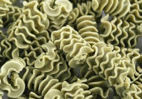 L'Atelier à Pâtes - Pâtes Radiatore Nature Sèches Au Basilic Bio