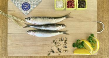La Criée d'à Côté - Sardines Entières - 1 kg