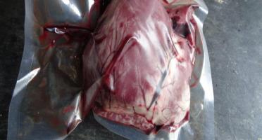 La Toison d'Or - [Précommande] Coeur De Porc Bio 100% Français Élevé En Plein Air/Paille
