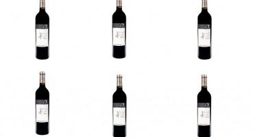Domaine de Bilé - IGP Vin Côtes de Gascogne Rouge Vendanges Mains - 6 Bouteilles de 75 cl