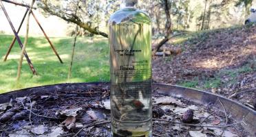 Vinaigres de la Carrière - Eau de Vie de Pomme au Fenouil - 50 cl