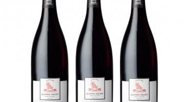 Domaine Jeannin-Naltet - Mercurey Premier Cru Clos Des Grands Voyens 2019 - 3 bouteilles