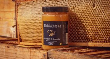 Les Ruchers de Normandie - Miel de Aubépine & autres petites fleurs crémeux 500g