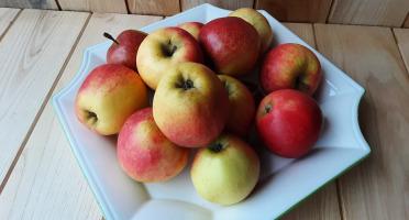 Gourmets de l'Ouest - Pommes Bio de la Baie du Mont-Saint-Michel