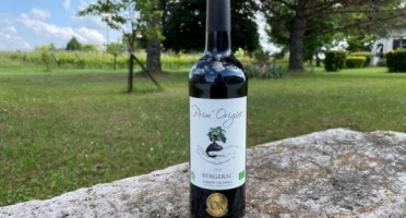 Vignobles Fabien Castaing - AOC Bergerac Blanc Sec Prim'Origine 2019 - 75cl