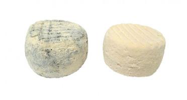 Fromagerie Seigneuret - Cabris Fermier