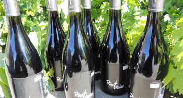 Domaine des Bourrats - Saint Pourçain AOC Rouge Cuvée Pinotissime - 6 bouteilles