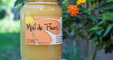 Miel et Pollen - Miel De Fleurs 500g