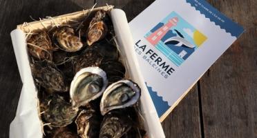 LA FERME DES BALEINES - Bourriche De 24 Huîtres N°3 - 100 % Élevées En Claires