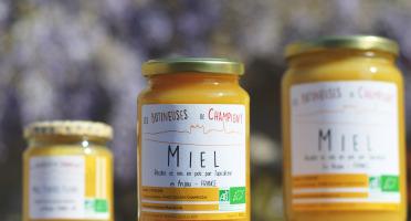Les Butineuses de Champigny - Miel toutes fleurs bio - 500 g