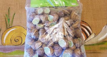 L'escargotière BONVALOT - 10 Douzaines d'Escargots Surgelés en Coquille au Beurre d'Ail et de Persil