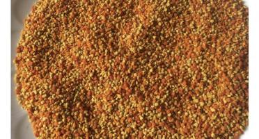 Rucher du Viala - Pollen Extra Frais