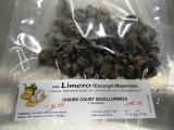Limero l'Escargot Mayennais - Chairs D'escargot Helix Aspersa Frais Parées Totalement - 1 sachet de 120