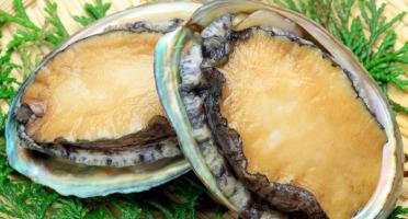 Luximer - Ormeaux Sauvages Préparés - 1 Kg