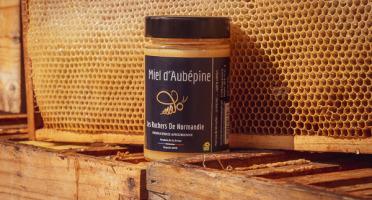 Les Ruchers de Normandie - Miel de Aubépine & autres petites fleurs crémeux 250g