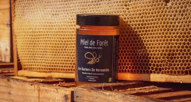 Les Ruchers de Normandie - Miel de Forêt liquide 250g