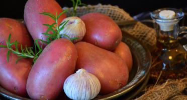 Le Châtaignier - Pommes De Terre Cherie - 14kg