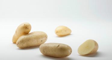 Maison Bayard - Pommes De Terre Princesse Amandine - 5kg