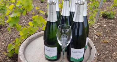 Champagne Deneufchatel - Champagne Deneufchatel Brut Tradition 6 X 75 Cl