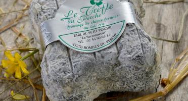 Le Petit Perche - Trèfle Du Perche de Chèvre