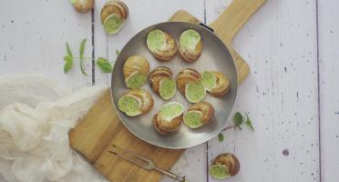 Limero l'Escargot Mayennais - Lot De 5 Assiettes De 12 Coquilles D'escargot Gros Gris À La Bourguignonne