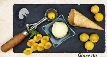 Glace du Geisshoff - Mirabelle Crème Glacée Fermière au Lait de Chèvre 750 ml