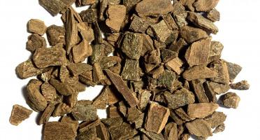 Nuage Sauvage - Cannelle Bio En Morceaux – S131
