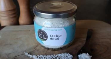 LA FERME DES BALEINES - La Fleur De Sel De L'ile De Ré - 250 G - Terre Saline