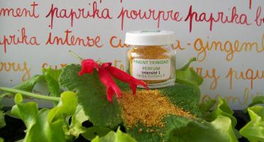 HERBA HUMANA - Piment Trinidad Perfum Bio Cultivé en France 3 g