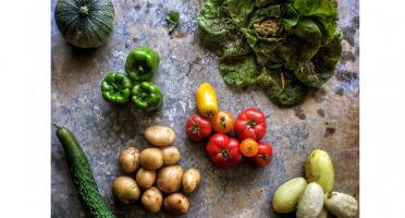 La Ferme d'Artaud - Panier De Légumes Frais (moyen)