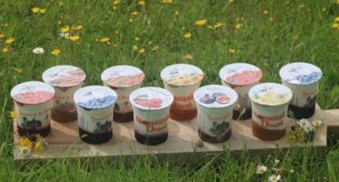 Ferme Dumesnil - Yaourt Fermier aux Fruits x10