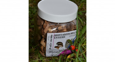 Trapon Champignons - Shiitakes Secs - 150 G - Entiers