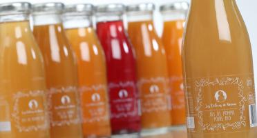 Les délices de Noémie - Lot De Jus Bio pour bébé: Pomme, Pomme- Poire/pêche/abricot, Pomme-pêche-abricot, Raisin (6x25cl)