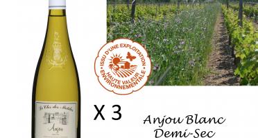 Le Clos des Motèles - Aoc Anjou Blanc Demi-sec 2019. 3 Bouteilles