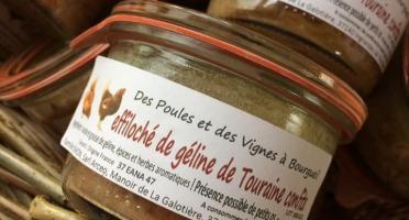 Des Poules et des Vignes à Bourgueil - Effiloché de Géline de Touraine