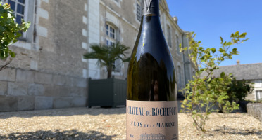Domaine du Château de Rochefort - Muscadet de Sèvre et Maine sur Lie AOP - Elevé en Barrique - 2018 x 3