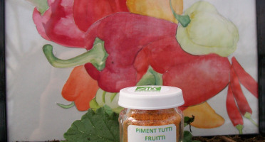 HERBA HUMANA - Piment Tutti Frutti Bio Cultivé en France 3 g