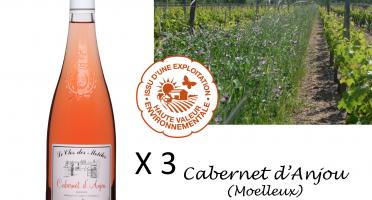 Le Clos des Motèles - Aoc Cabernet D'anjou 2019: 3 Bouteilles