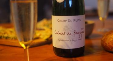 SCEA Champ du Puits - Crémant de Bourgogne - 2 bouteilles